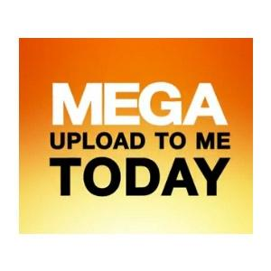 courts_grants_a_hearing_to_a_megaupload_user_to_argue_for_his_data