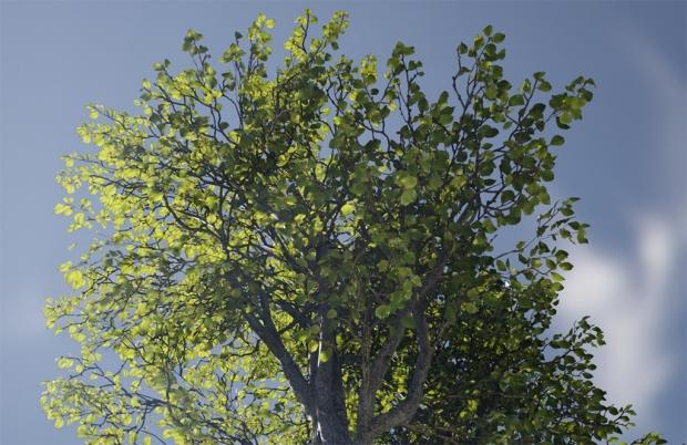 Unreal Engine updated with incredibly 'realistic foliage